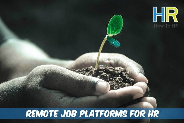 Remote Job Platforms For HR Professionals