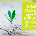 Which Route Of Growth Will Work Out Best For You by newtohr.com