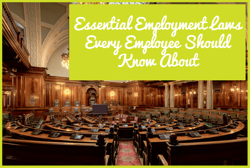 Essential Employment Laws Every Employee Should Know About by newtohr.com