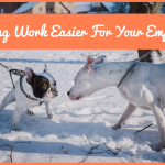 Making Work Easier For Your Employees by #NewToHR
